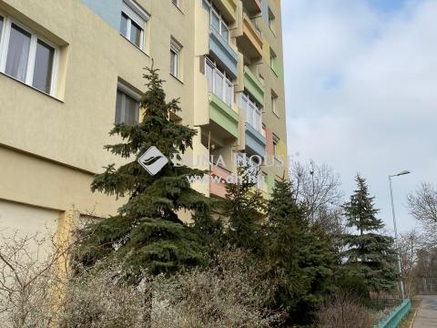 Eladó Üzlethelyiség, Budapest 3. kerület